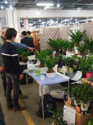 JFIトレードフェア2017秋inFAJ ―ここから始まる花未来ビジネス-