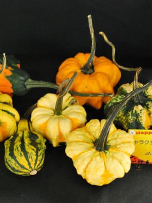 ハロウィン向け「かぼちゃ」
