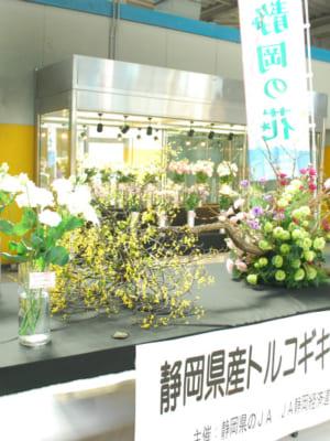 静岡県産トルコギキョウフェアを行いました