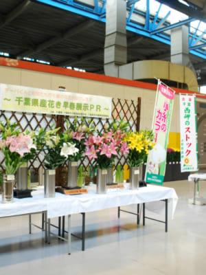 千葉県産花き早春展示PRが行われました