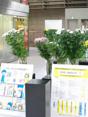 花き品質管理認証取得生産者の花の展示を行いました。