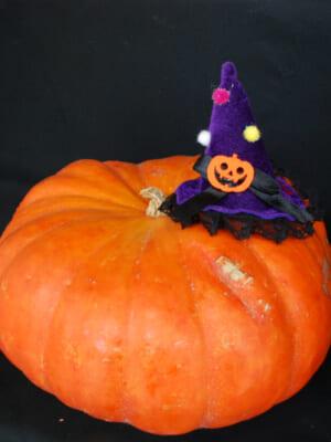 北空知広域連のかぼちゃ